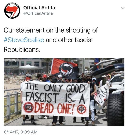 antifa losers 2